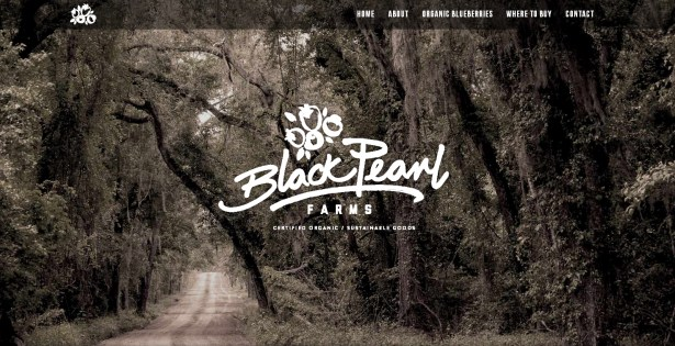 Black Pearl Farms