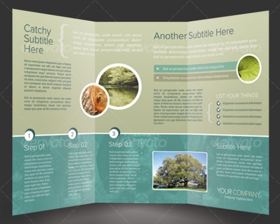 Quality Brochure Templates Vandelay Design - Brochure templates psd