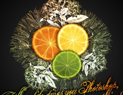 citrus fruit design
