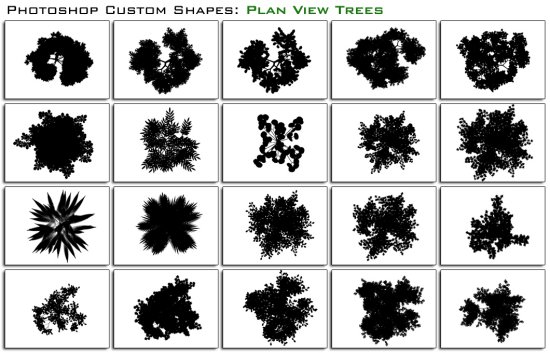 Plan View Trees