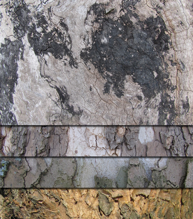 Free Bark Textures