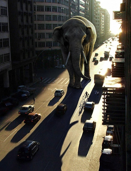 Lighting a Giant Elephant