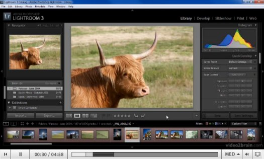 Adobe Lightroom 3: Presets and Templates