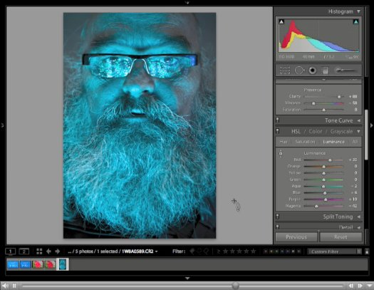 Controlling Vibrance and Saturation in Lightroom