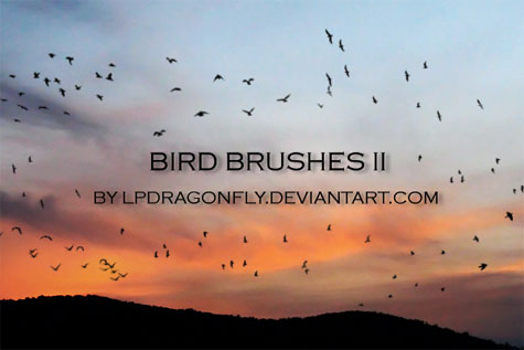 Bird Brushes II