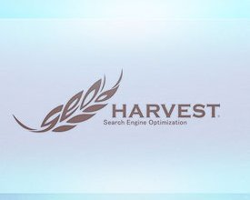 SEO Harvest