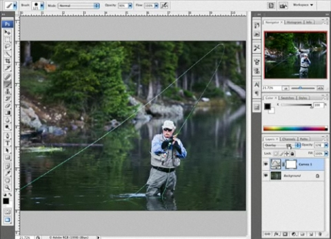 Photoshop CS4 Tone Correction (video)