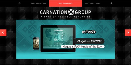 CarnationGroup