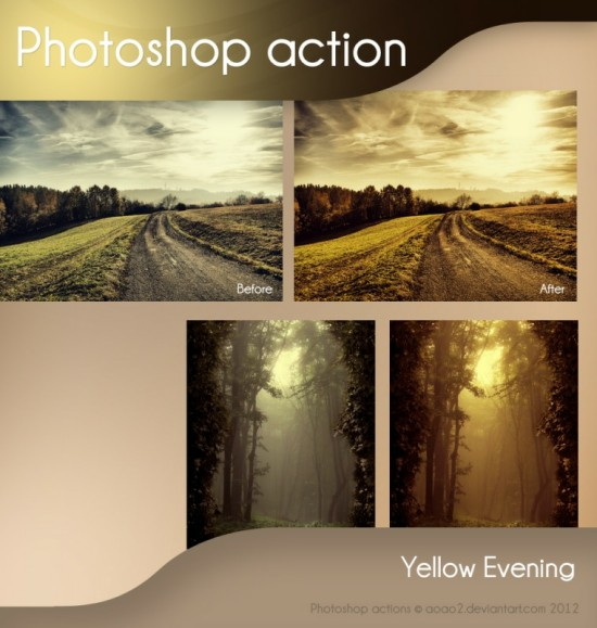 Yellow Evening Action