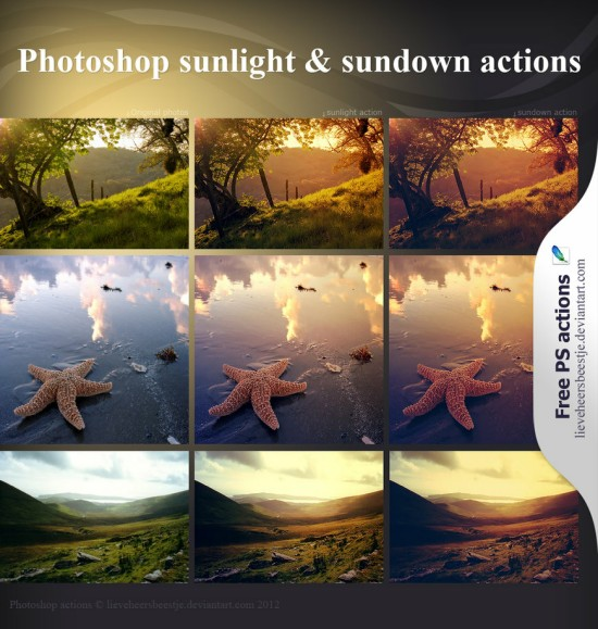 Sunlight and Shadow Actions