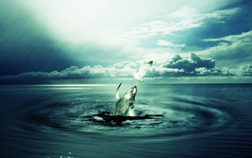 Create a Dramatic Photo Manipulation of a Whale Stealing from a Seagull
