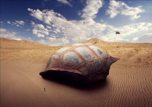 How to Create a Sci-Fi Giant Tortoise Shelter Photo-Manipulation
