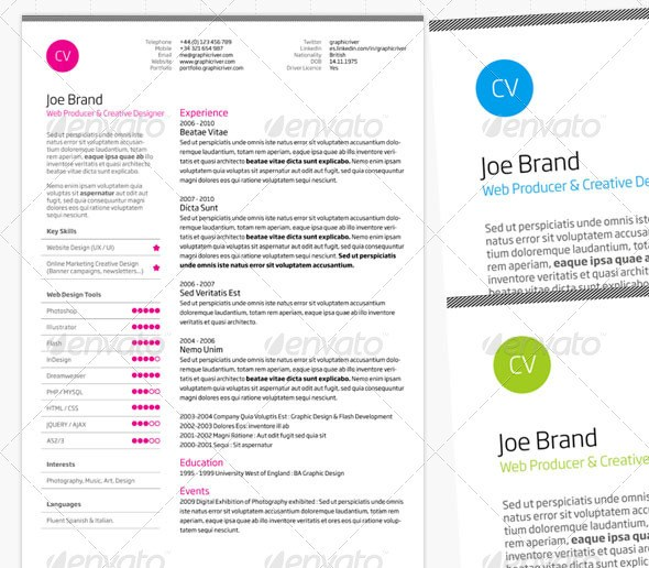 Clean and Professional Resume