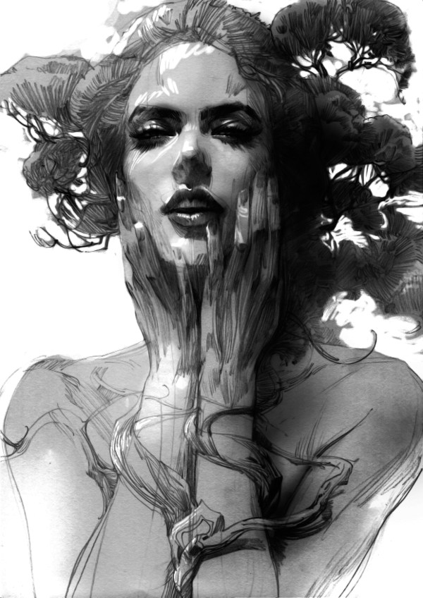 Exquisite Pencil Drawings That Will Dazzle You