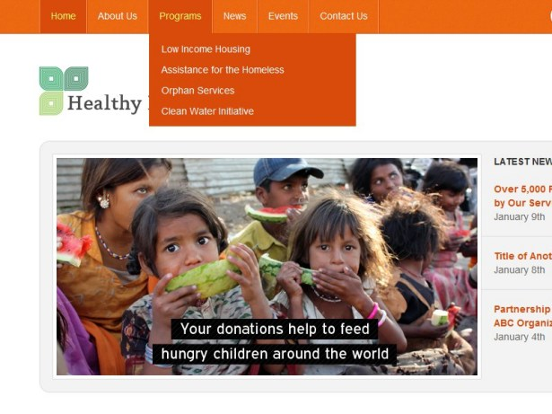 Documentation for Simple Non-Profit WordPress Theme