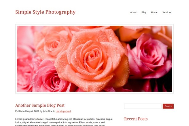 Documentation for Simple Style Photography WordPress Theme