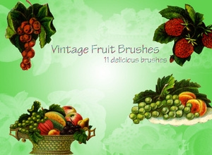 Vintage Fruit Brushes
