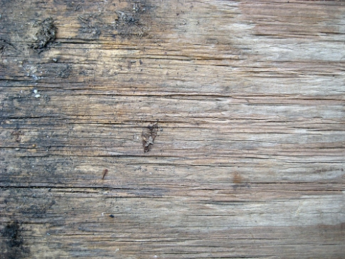 wood 12 45 texturas de madera gratuitas
