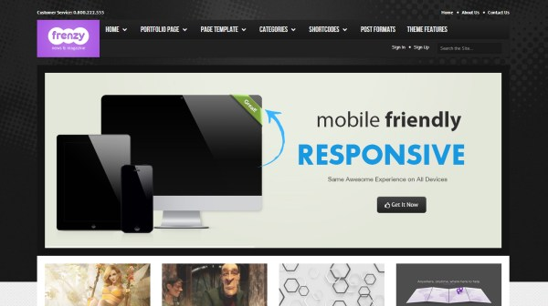 Frenzy Responsive Multi-Purpose Theme