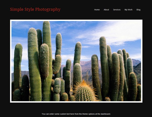 Simple Style Photography Theme