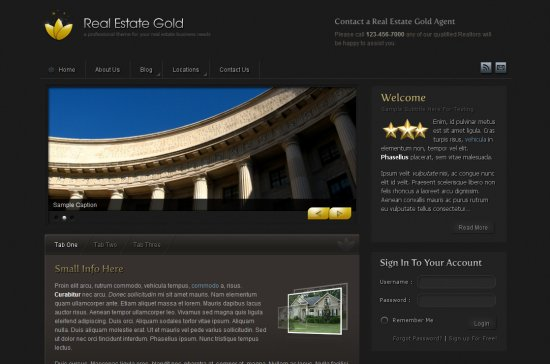 Real Estate Gold