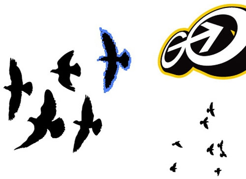 Animating Birds with After Effects
