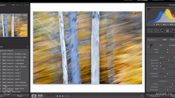 Essential Shortcuts for Lightroom's Develop Module