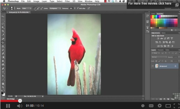 Color Replacement in Photoshop CS6
