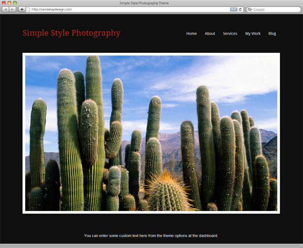 Simple Style Photography WordPress Theme